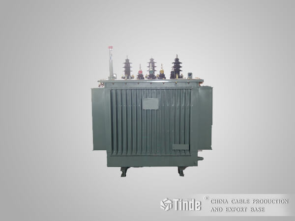 10KV Class S11 series oil-immersed transformers